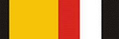 Орденская планка «Участнику военной операции в Сирии»