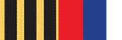 Медаль ордена «Служа России - служу закону «Честь, знания, закон»