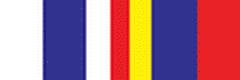 Медаль «За принуждение Грузии к миру»